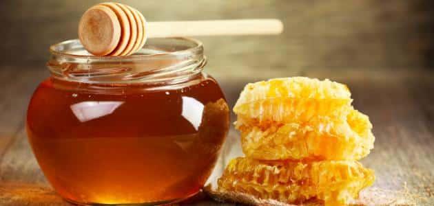 مناحل العسل في بورصة
